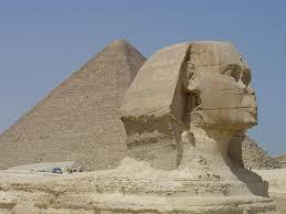 توكيل ايديال زانوسى المعتمد مصر ( 01066558776 ++ 33100179 . Images?q=tbn:ANd9GcTESki-5Gz246X9uz4UksKDV2SyRH5jedWU78QRlKglresnFu0Bcg