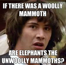 If there was a woolly Mammoth are elephants the unwoolly Mammoths ... via Relatably.com