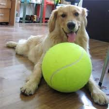 1pc <b>24CM Giant Tennis Ball</b> For Pet Chew Big Inflatable Tennis Ball ...