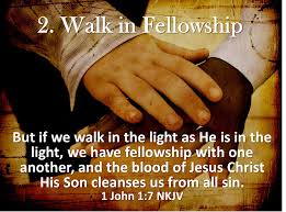 Image result for verse where we go is fellowship not a building
