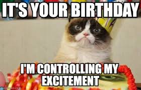 Cat Birthday Meme - Beautiful Images and Pictures via Relatably.com