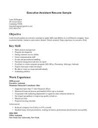 Cover Letter: Good Objectives for Resumes for Students Resume ... ... Cover Letter, Good Objectives For Resume For Objective With Key Skill: Good Objectives for ...