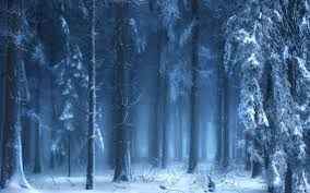 stopping by the woods on a snowy evening robert frost