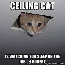 Ceiling cat is watching you sleep on the job... ;) Robert ... via Relatably.com