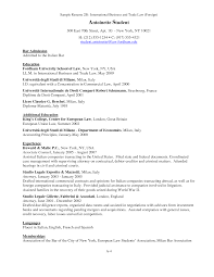 international business experience resume cipanewsletter sample resume for 1l law student resume pdf