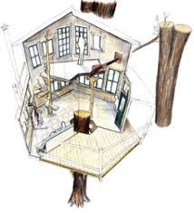 Cool Tree House Plans   Learn how to build a tree housetree house plan tree house plan