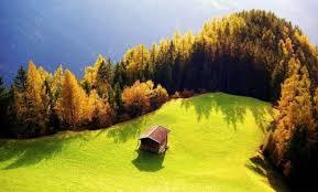 Красивые фотографии Images?q=tbn:ANd9GcTF9raTquikd1w9KQoz79d3zvl2rby4njftltO5HdDqCwInLXSXvA