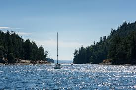 Image result for sailing the narrows