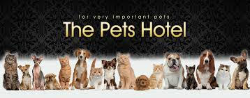 Welcome to The <b>Pets</b> Hotel - <b>Dog</b>, Cat, <b>Pet</b> Accomodation ...