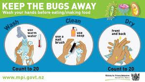 how can whānau avoid infections hapu hauora te karonga i nga safe food preparation