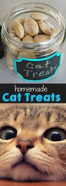 1000 ideas about homemade cat toys on pinterest cat toys cats and cat toys uk cat lovers 27 diy solutions