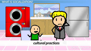 agents of socialization family schools peers and media video primary socialization agents definition and theory