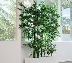 decor bamboo plants decorating sticks