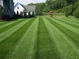 Image result for mowing stripes