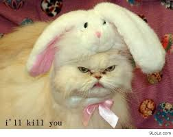 funny quotes, funny animals, funny easter, funny conversations ... via Relatably.com