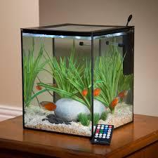 current solo desktop aquarium office desk aquarium