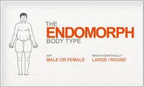 Image result for endomorph body types