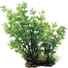 <b>Искусственное растение</b> ArtUniq Bacopa red-<b>green</b> 20 Бакопа для ...