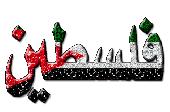 فلسطين................تنزف images?q=tbn:ANd9GcT