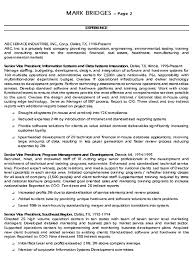 cfo resume summary example download sample finance executive summary example resume