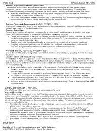 vice president resume vice president resume sample vice president resume