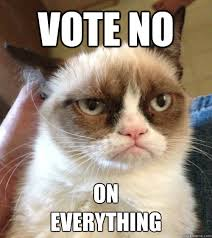 Image result for vote funny picture
