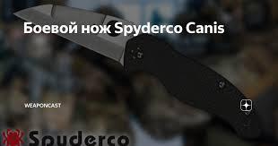 Боевой <b>нож Spyderco Canis</b>   WeaponCast   Яндекс Дзен