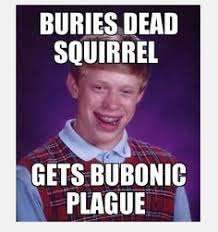 Unlucky Brian! on Pinterest | Bad Luck Brian, Meme and Face Swaps via Relatably.com