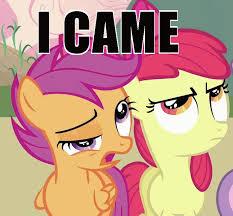 my little pony meme - Google Search | My little pony | Pinterest ... via Relatably.com