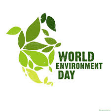 essay about environment essay on world environment day world s largest collection of essays published by experts