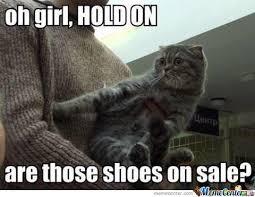 Sassy Cat Is Sassy by verterlex - Meme Center via Relatably.com