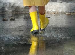 """Résultat de recherche d'images pour """"bon après-midi venteux et pluvieux"""""""