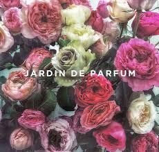 <b>Jardin de Parfum</b> • Garden Rose