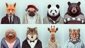 Love <b>Animals</b>? Then Quit Fast <b>Fashion</b> - Dulce Salerno Monaco