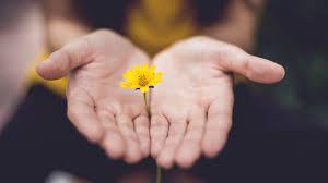 <b>Forgiveness</b>: The Key to Pastoral <b>Unity</b>