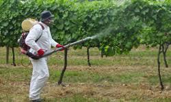 Resultado de imagem para aplicação de pesticidas+imagens