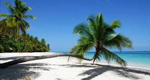 """Résultat de recherche d'images pour """"maldives plage"""""""