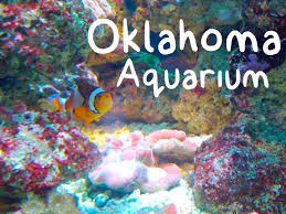 Image result for oklahoma aquarium