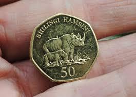 Image result for rhino money