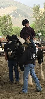 <b>Something About</b> a Horse: Finding <b>Benefits</b> in Therapeutic Riding ...