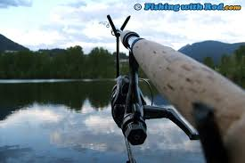 Image result for Free Articles fishing