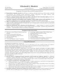non profit resume non profit executive resume example non profit non profit executive director resume samples of resumes