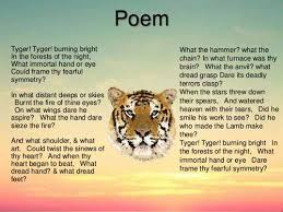 free essays on life of pi survival through   essay depot our service can write a custom essay on life of pi for you