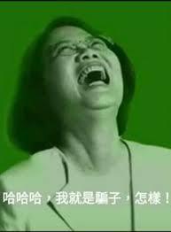30秒了解長照3.0:蔡英文搞垮台灣觀光業,目的是把大飯店轉型長照中心啦
