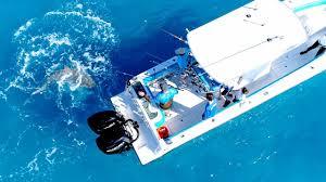 Angry Bull <b>Shark</b> Randomly Attacks 30ft Boat - 4K - YouTube