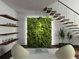 charming modern indoor plants and tall gardening review design ideas with brown wooden floating wall two charming office plants