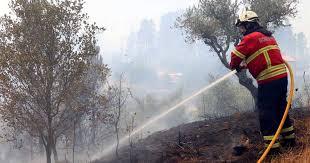 Dominados os incêndios no concelho de Penedono e Penalva do Castelo