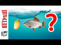 <b>Крючки</b> :: <b>Крючки</b> для мирной рыбы :: <b>Крючок CAT FISH-COM</b> FK ...