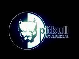 Infogrames/<b>Pitbull Syndicate</b>/MPEG Sofdec (1999) - YouTube