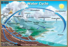 the water cycle  u s  geological survey  usgs  water science schoolpage size diagram